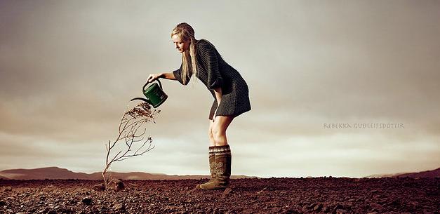 watering-dead-plant